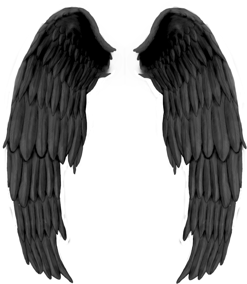 Asa de anjo clipart png free library Asa de anjo clipart images gallery for free download   MyReal clip ... png free library