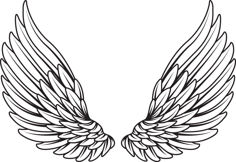 Asa de anjo clipart vector black and white stock Pin de Emilly Nikolly em imagens   Ideias de tatuagens, Tatuagem ... vector black and white stock