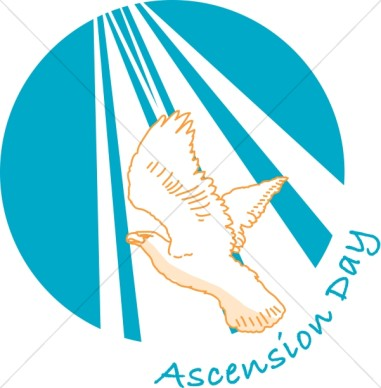 Ascension 2019 clipart free download 20 Adorable Ascension Day Greeting Images And Photos free download