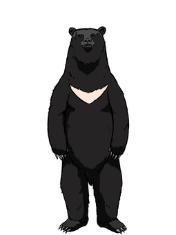 Asian black bear clipart clip freeuse Free Cliparts : bear Bear animal wild - 472064 | illustAC clip freeuse