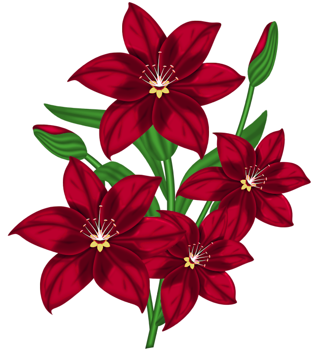 Asian flower clipart banner royalty free download Nice Red PNG Flower Clipart | Flowers | Pinterest | Flower clipart ... banner royalty free download