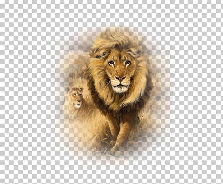 Aslan resmi clipart clip transparent download Lion Art Embroidery Painting Drawing PNG, Clipart, Animals, Art ... clip transparent download