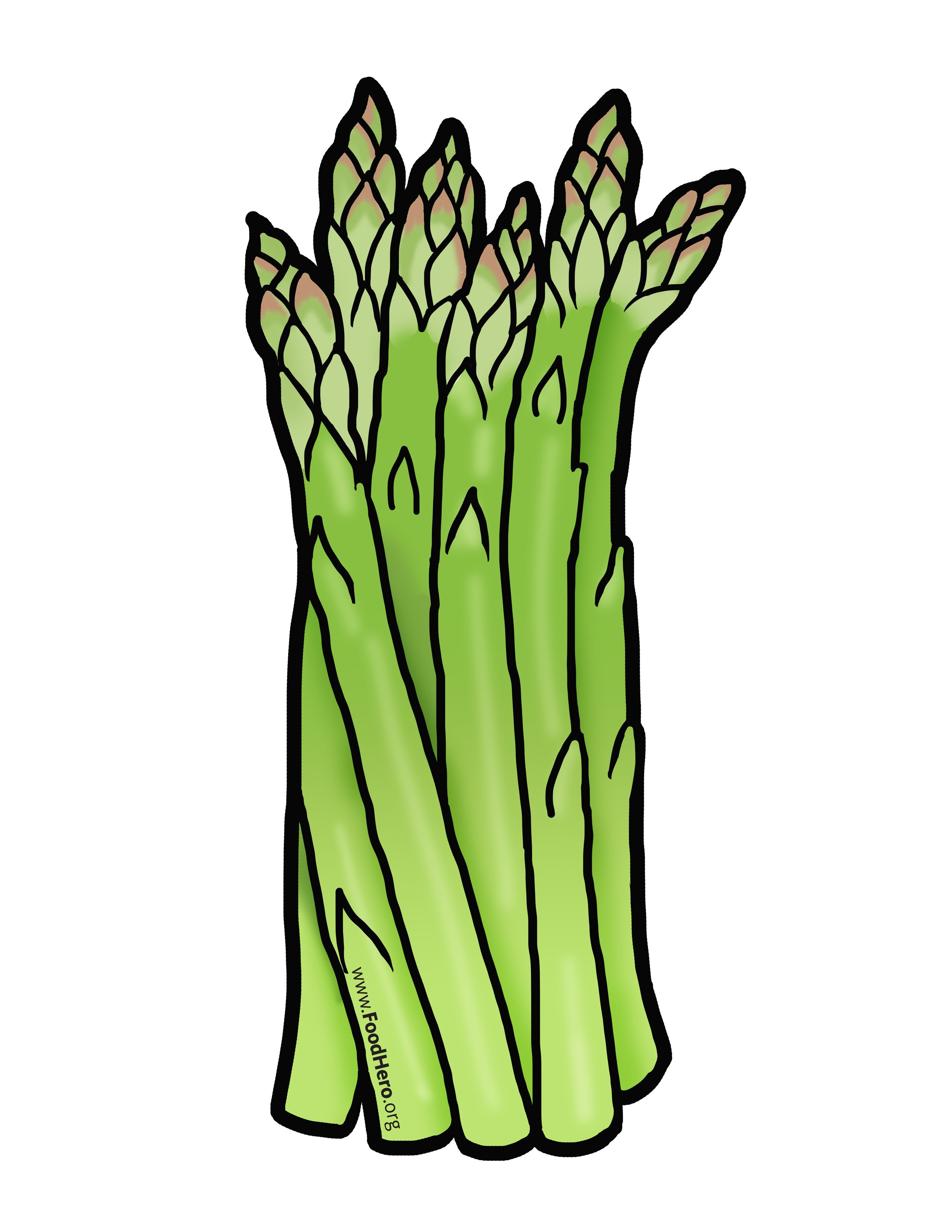 Clipart asapagass jpg black and white stock Asparagus illustration. #foodhero #bullentinboards #artwork ... jpg black and white stock