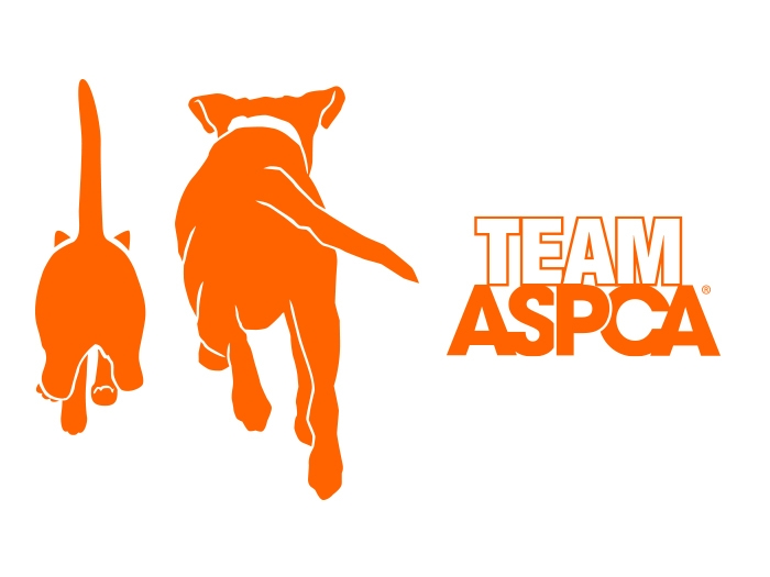 Aspca logo clipart banner transparent stock Rachel\'s Rescue Race | ASPCA banner transparent stock
