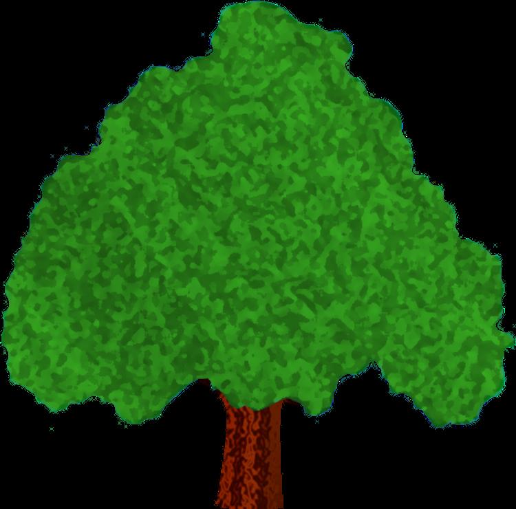 Aspen tree clipart image freeuse stock Tree Identification - Google Slides image freeuse stock