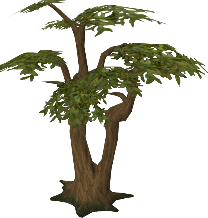 Jungle tree clipart jpg free stock Trees | RuneScape Wiki | FANDOM powered by Wikia jpg free stock