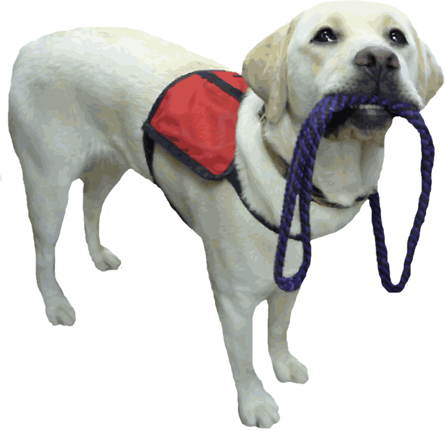 Assistance dog clipart picture freeuse stock service dog | comically quirky picture freeuse stock
