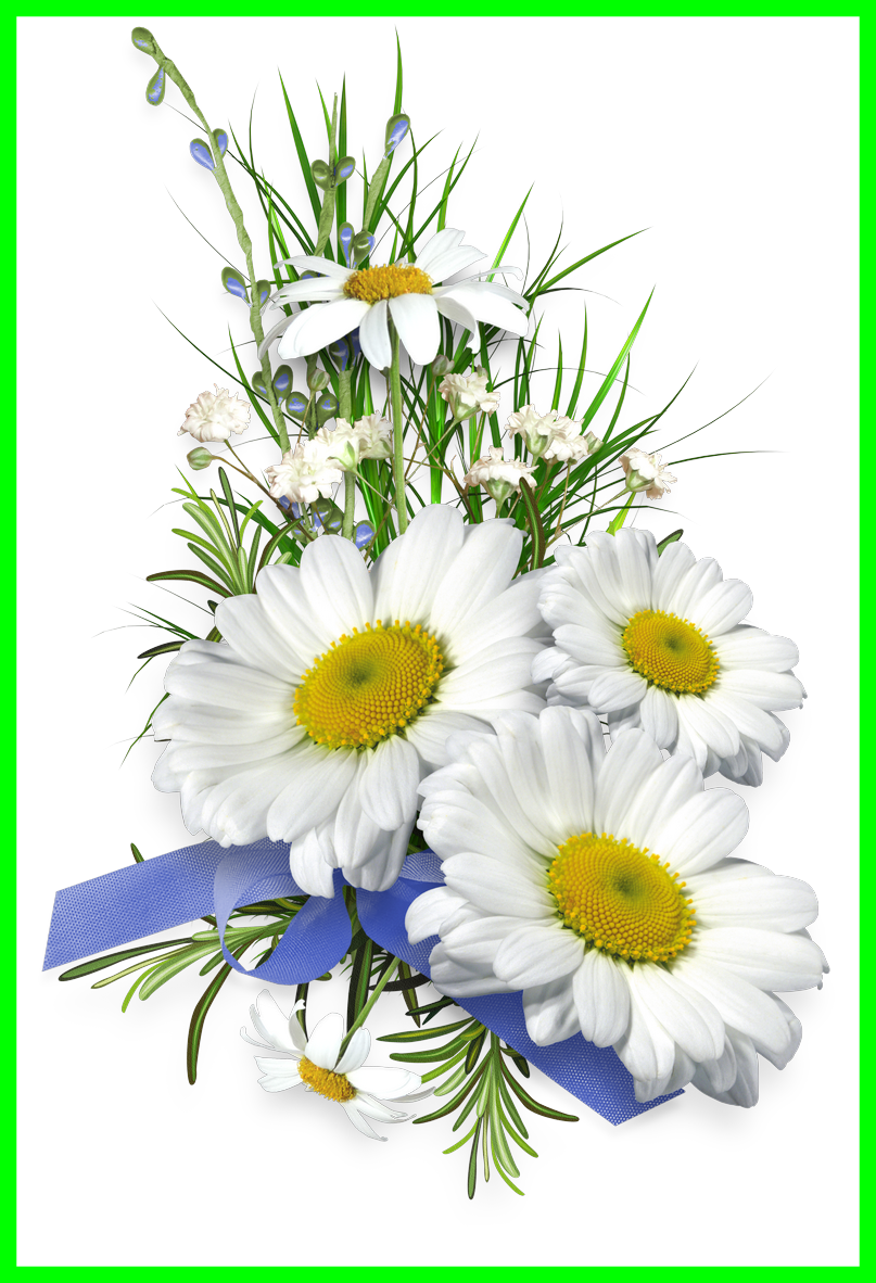 Aster flower clipart svg black and white stock Appealing Aster Stem And Flower Pics For Clipart Popular Inspiration ... svg black and white stock