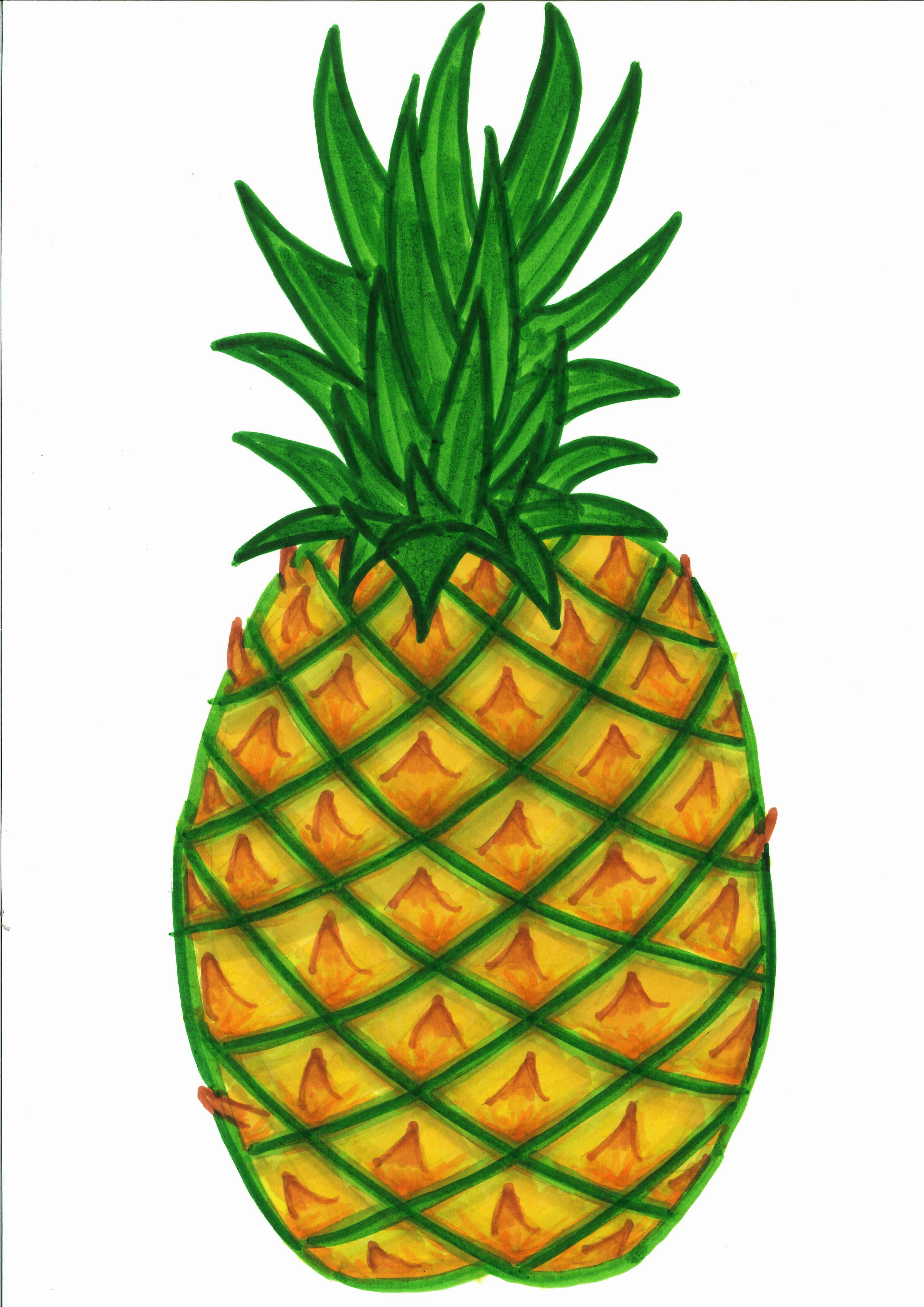 Pinya clipart picture freeuse Atis clipart 12 » Clipart Station picture freeuse