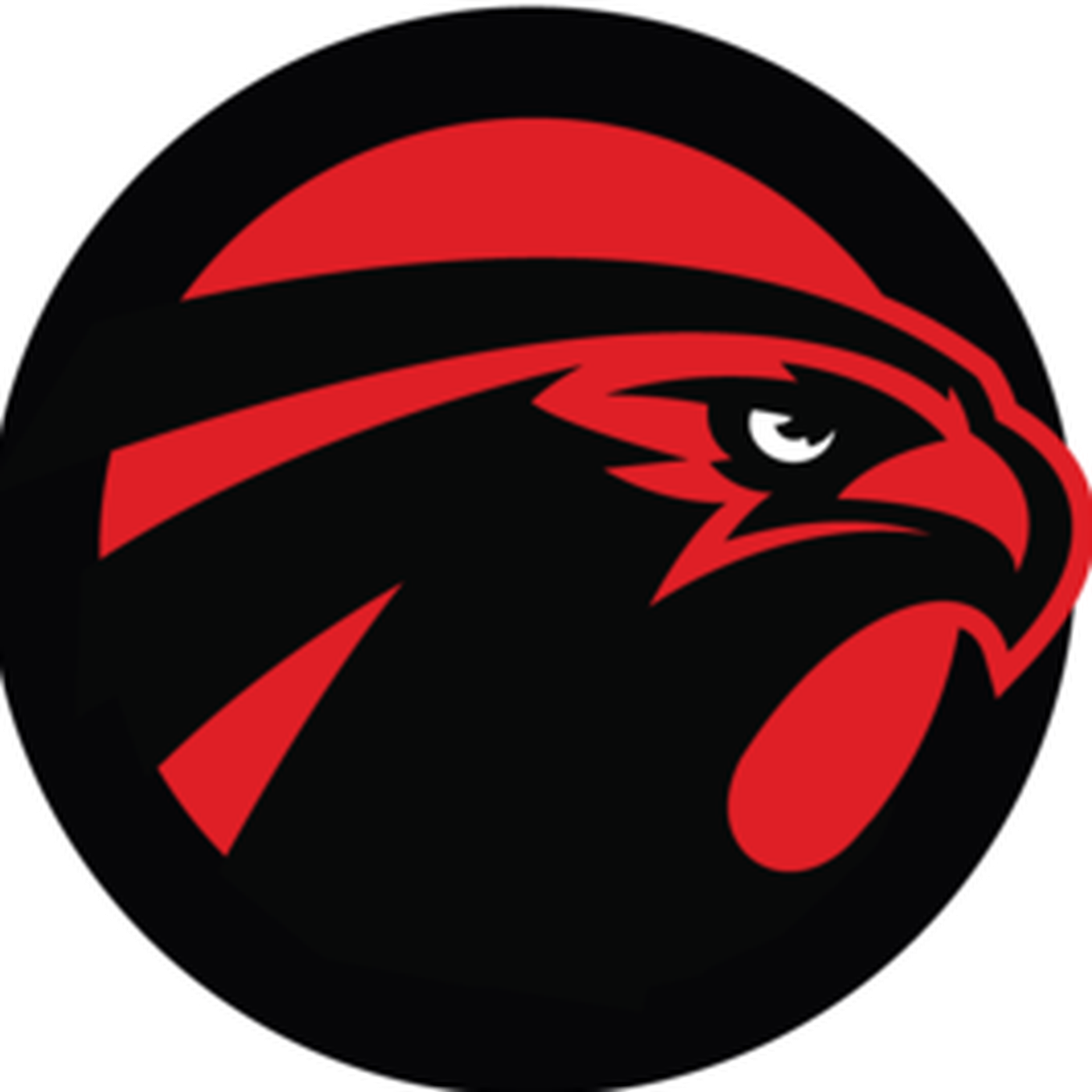 Atlanta falcons football clipart png black and white Atlanta Falcons Facts - The Falcoholic png black and white
