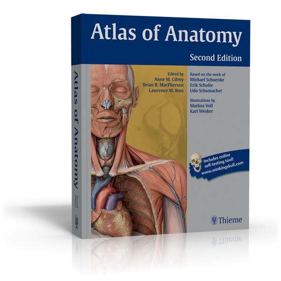 Atlas book clipart clip art free library human anatomy books for medical students anatomy book med student ... clip art free library