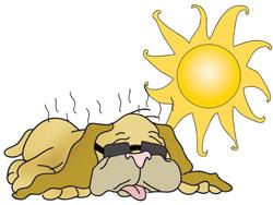Dog days of . August clipart calendar