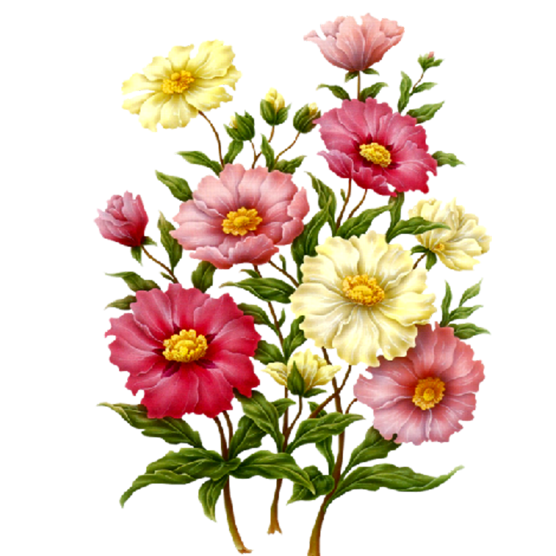 Flower patch clipart banner free download Flowers PNG   Digi Art - Flowers   Pinterest   Flowers, Decoupage ... banner free download