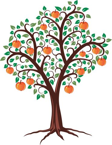 August tree clipart png free download Roots, Shoots, and Fruits Published by Jeanette Leardi ... png free download