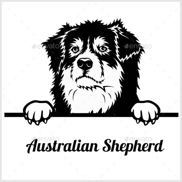 Australia shepard clipart png royalty free stock Australian Shepherd Peeking Dog Face png royalty free stock