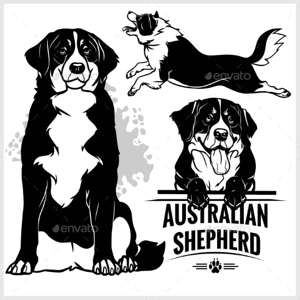 Australia shepard clipart image free Australian Shepherd Dog image free