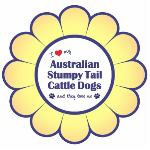 Australian stumpy tail cattle dog clipart free library 10 Best images about Australian Stumpy Tail Cattle Dogs on ... free library