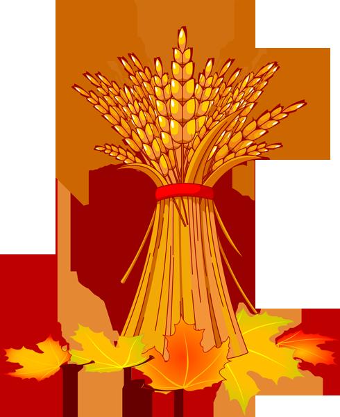 Autumn corn clipart free clip transparent stock Wheat and Fall Leaves | Autumn | Fall clip art, Fall clip art free ... clip transparent stock