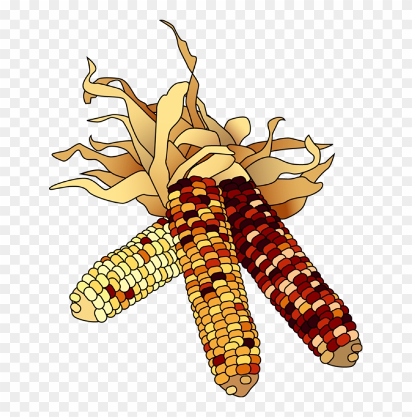 Autumn corn clipart free banner freeuse download Indian Corn Image Png Clipart - November Clip Art Free, Transparent ... banner freeuse download