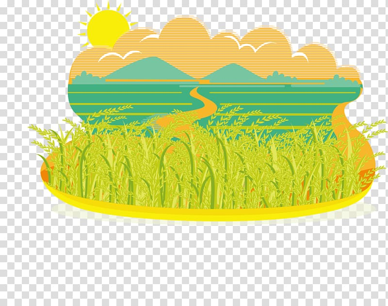 Autumn field clipart banner library stock Green leafed plants with field during daytime illustration, Paddy ... banner library stock