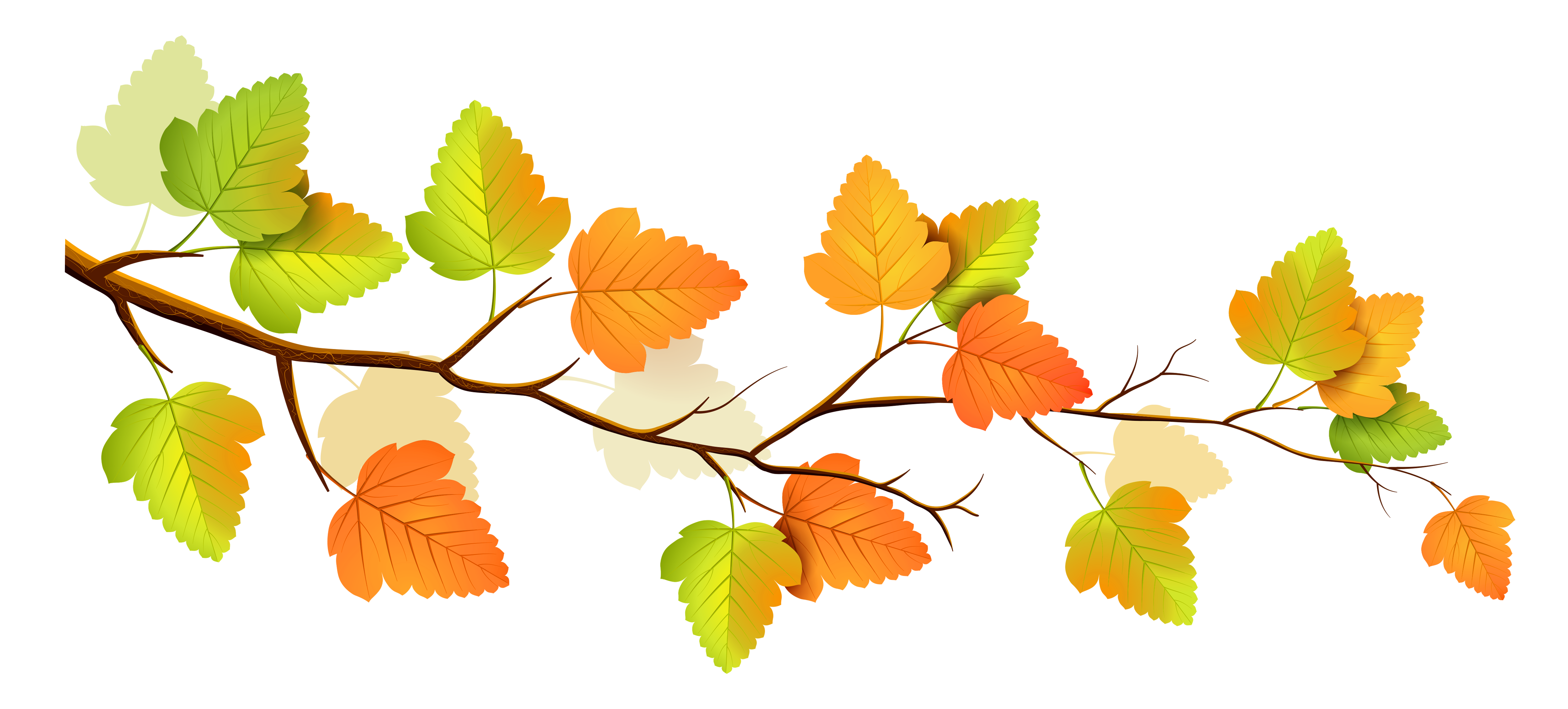 Autumn flower clipart image free Fall Flowers Clipart at GetDrawings.com   Free for personal use Fall ... image free