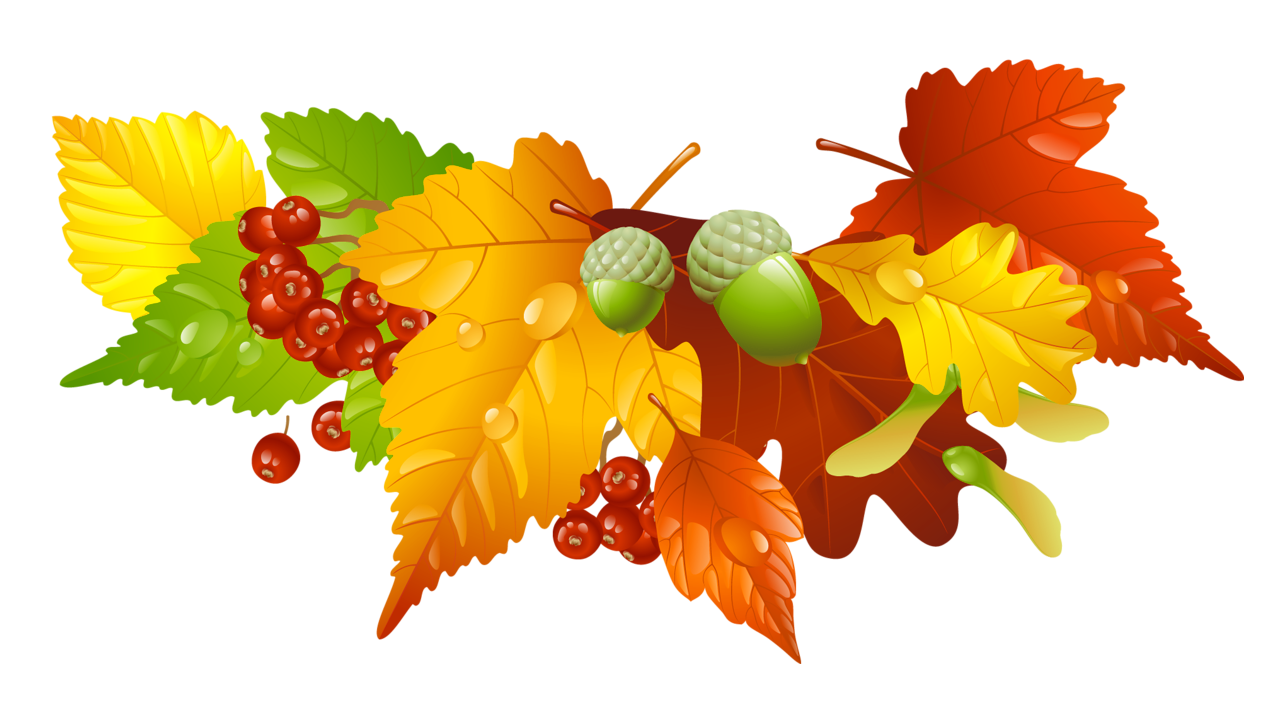 Mickey thanksgiving clipart clip art library download Autumn Leaves and Acorns Decor PNG Picture | Gallery Yopriceville ... clip art library download