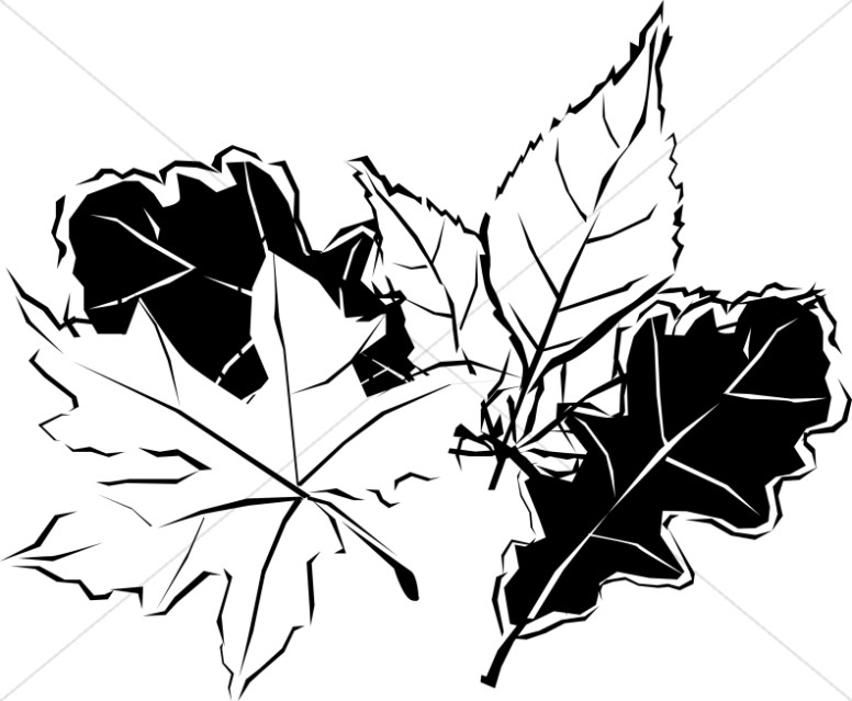 Autumn leaves clipart black and white graphic freeuse stock Black and White Autumn Leaves | Nature Clipart graphic freeuse stock