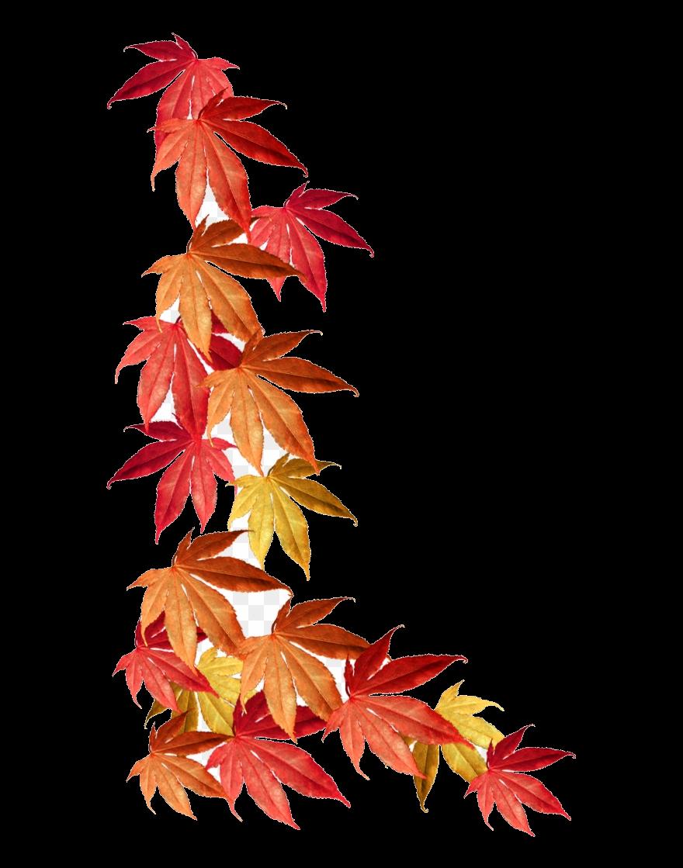 Autumn leaves clipart border picture transparent Fall Border Autumn Leaves Clipart Transparent Png - AZPng picture transparent