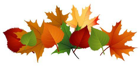 Autumn leaves clipart pintrest jpg royalty free library Pinterest jpg royalty free library