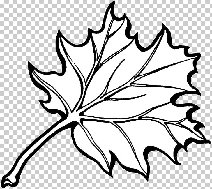 Autumn leaves coloring clipart graphic black and white library Coloring Book Autumn Leaf Color PNG, Clipart, Adult, Artwork, Autumn ... graphic black and white library