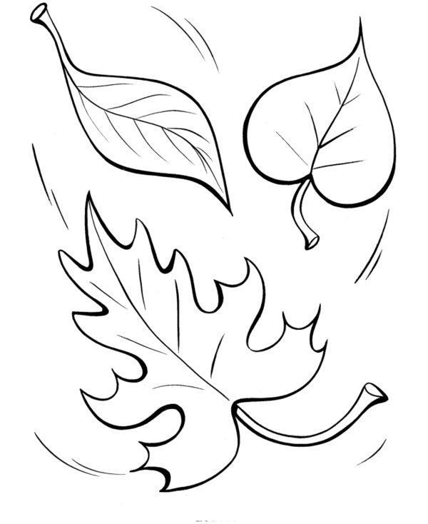 Autumn leaves coloring clipart svg free stock Fall Coloring Pages Printable | Printable Autumn Leaves Coloring ... svg free stock