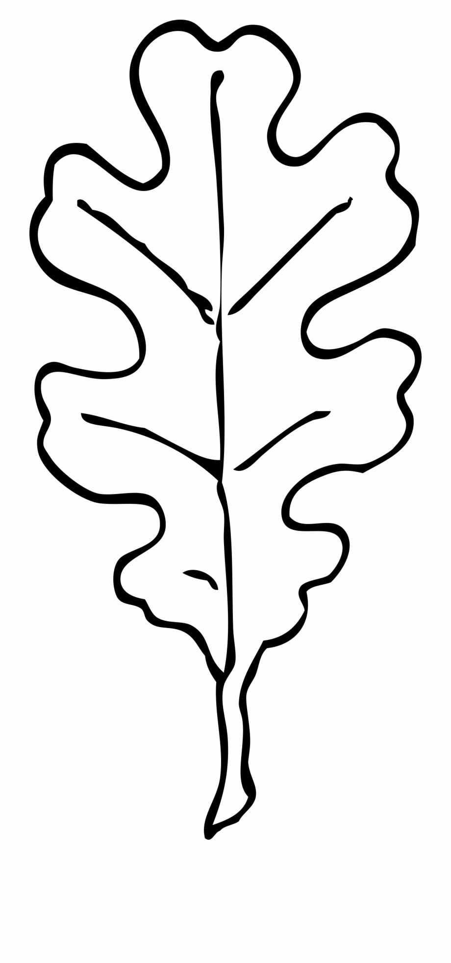 Autumn oak leaf black and white clipart freeuse library Fall Leaves Clipart Black And White Border - Oak Leaf Clipart Black ... freeuse library