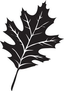 Autumn oak leaf black and white clipart banner library Leaf Clipart Image: The Silhouette Of A Oak Leaf | Home Castle~Wood ... banner library