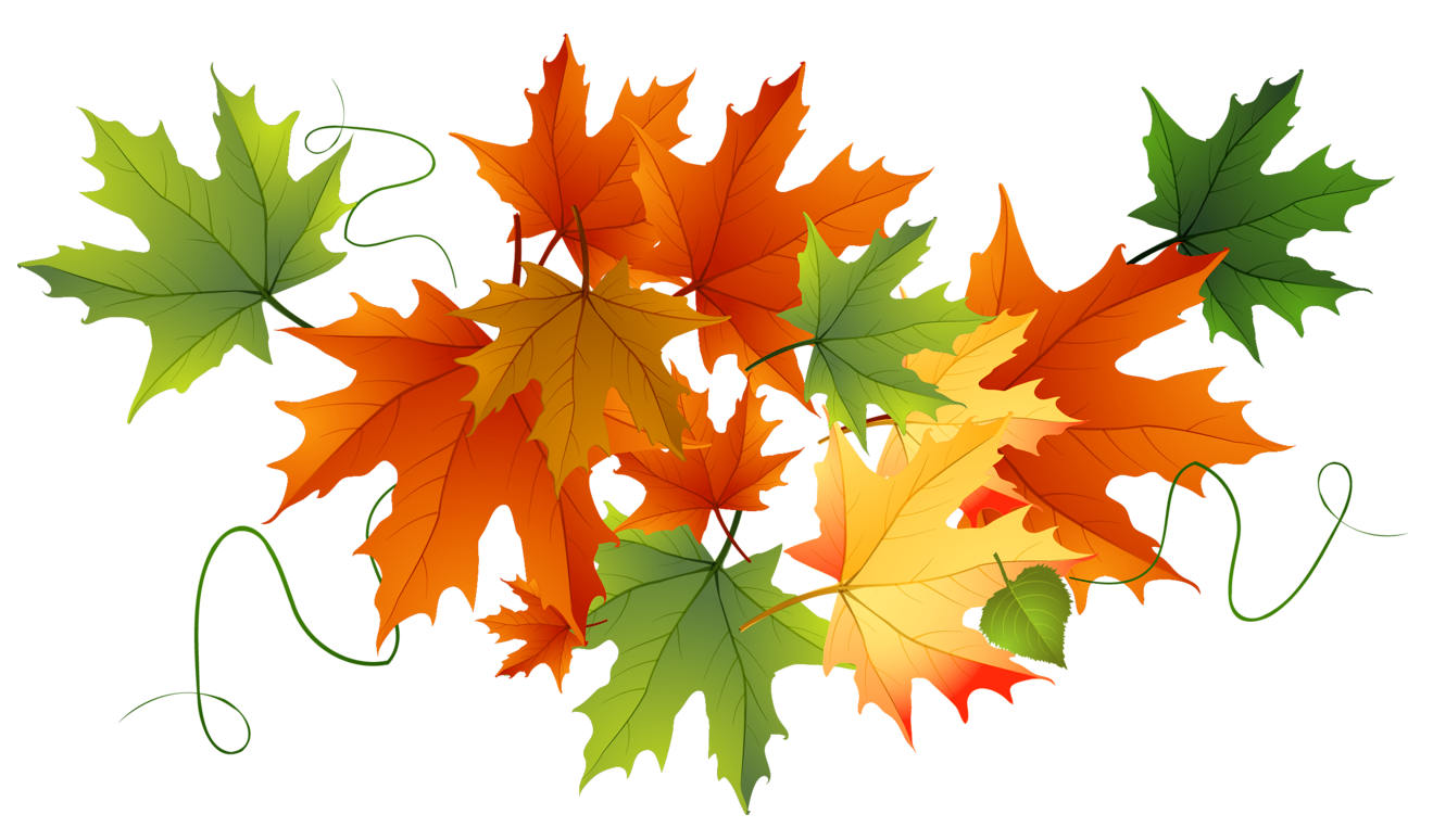 Fall thanksgiving clipart autumn png black and white library Autumn Transparent Leaves | Gallery Yopriceville - High-Quality ... png black and white library