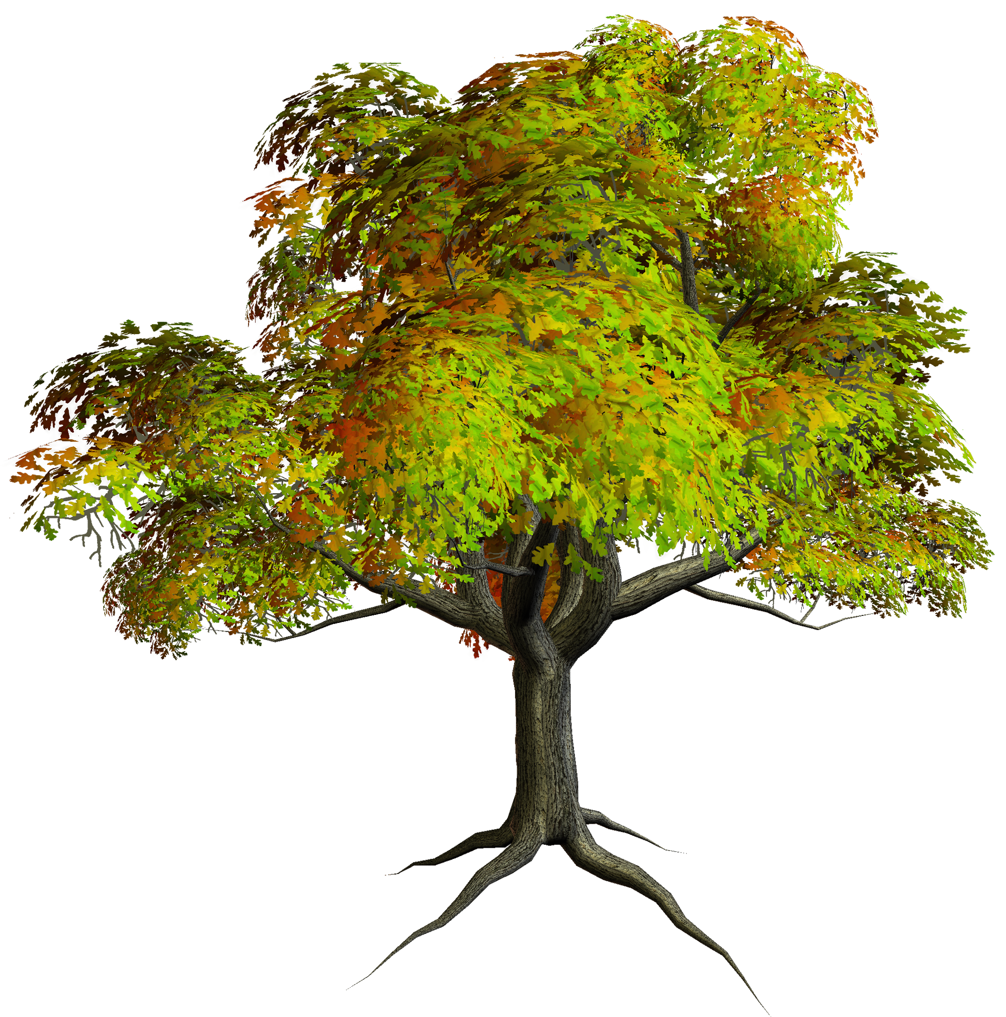 Autumn PNG Tree Clipart | Gallery Yopriceville - High-Quality ... image royalty free stock