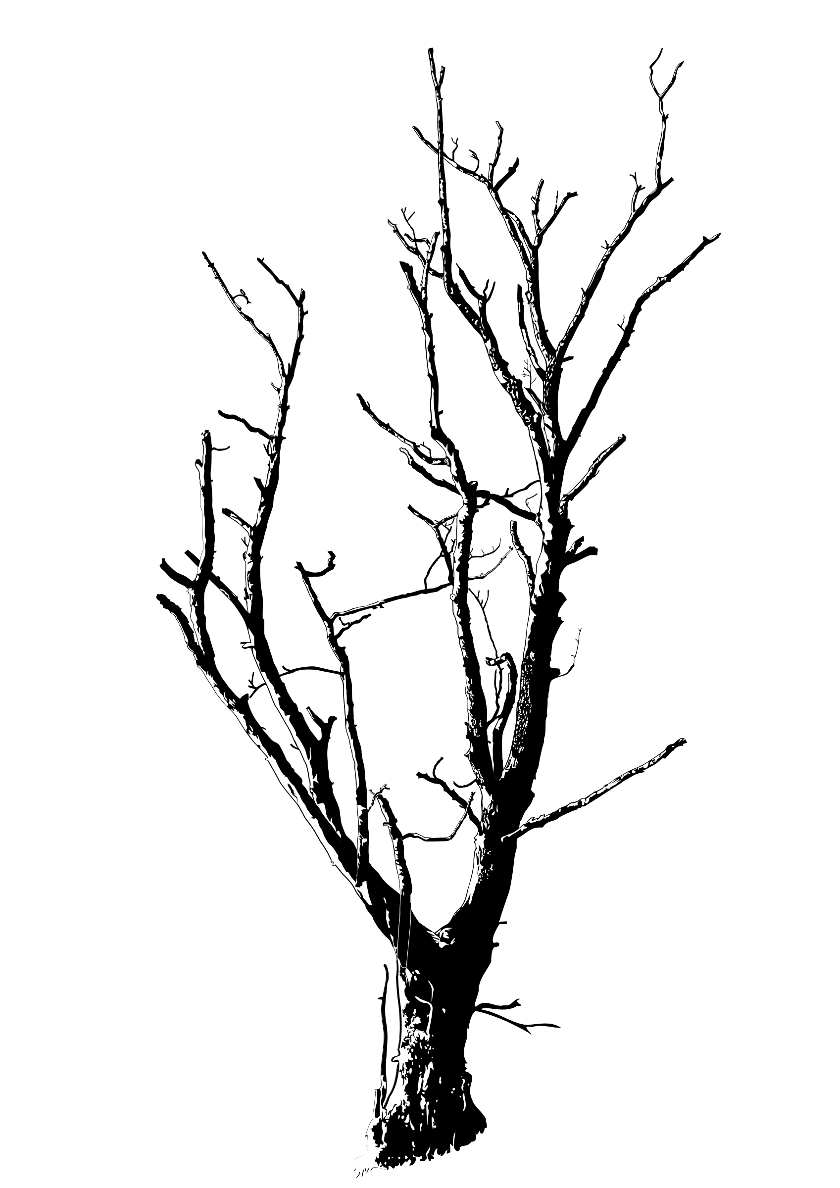 Autumn tree clipart black and white freeuse download Dead Leaf Drawing at GetDrawings.com | Free for personal use Dead ... freeuse download