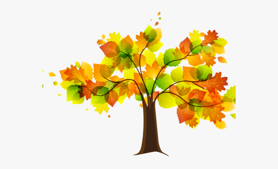 Autumn tree leaves clipart png transparent library Autumn Leaves Clipart Early Fall - Png Cartoon Tree Flower ... png transparent library