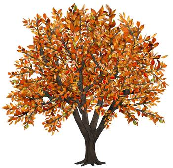 Clipartfox trees and . Autumn tree with hearts clipart