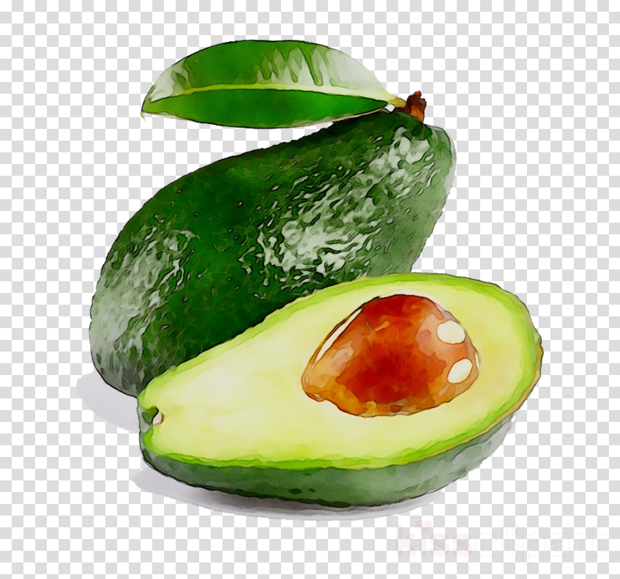 Avocado juice clipart freeuse library Juice Background clipart - Juice, Food, Avocado, transparent clip art freeuse library