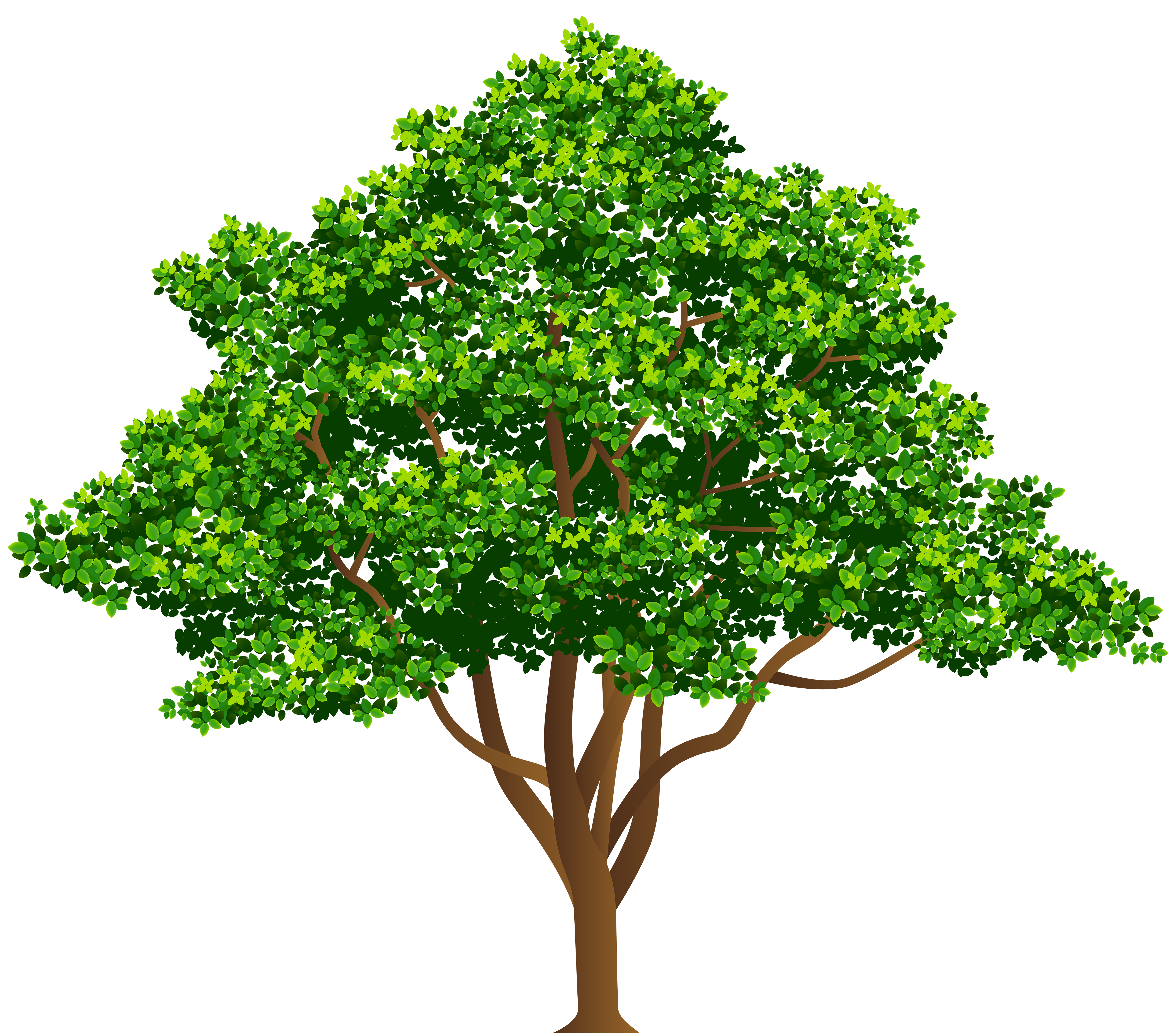 Tree free clipart clipart library library Tree Free PNG Clip Art Image | Gallery Yopriceville - High-Quality ... clipart library library