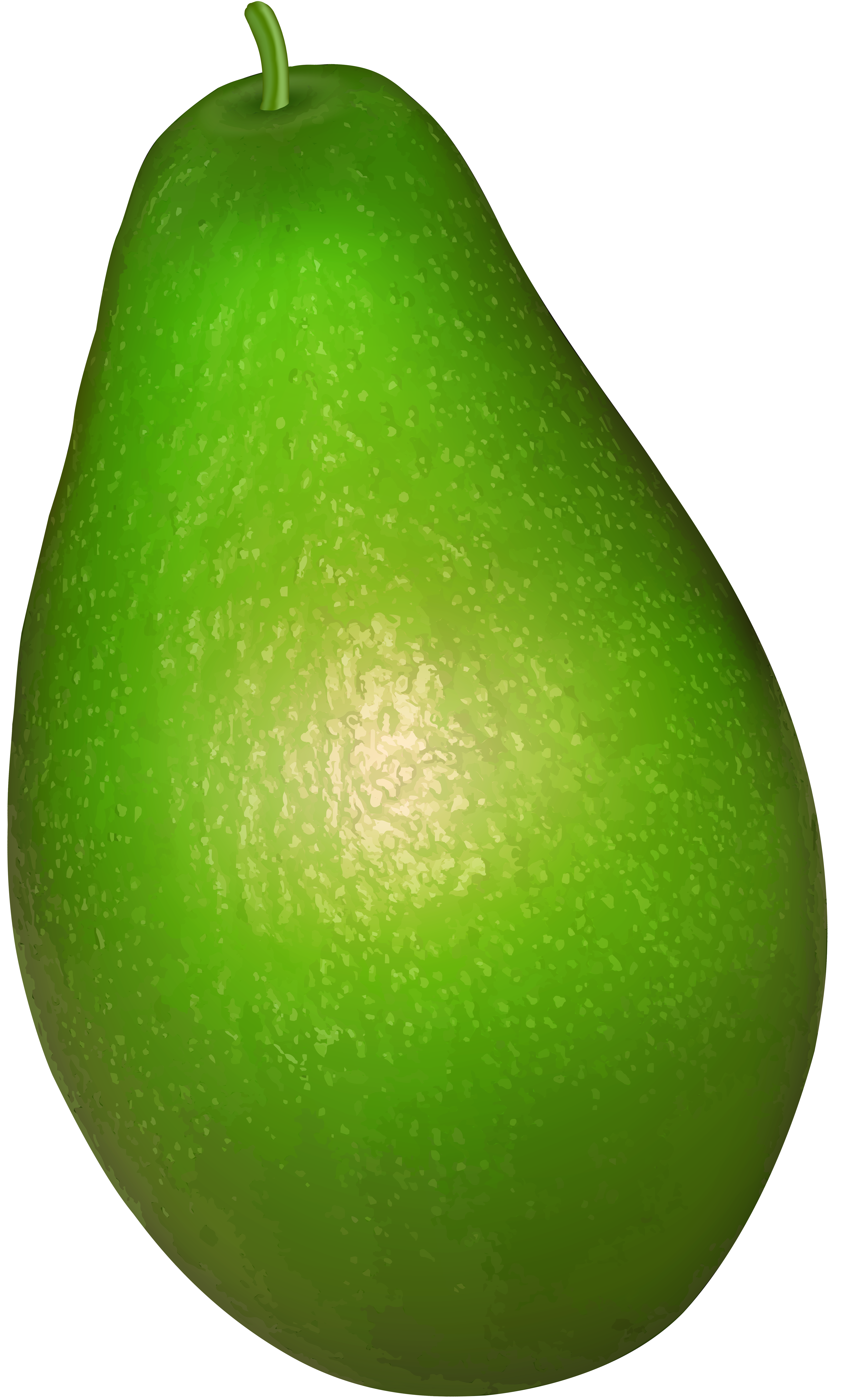 Avocado tree clipart png freeuse library Avocado Clipart at GetDrawings.com   Free for personal use Avocado ... png freeuse library