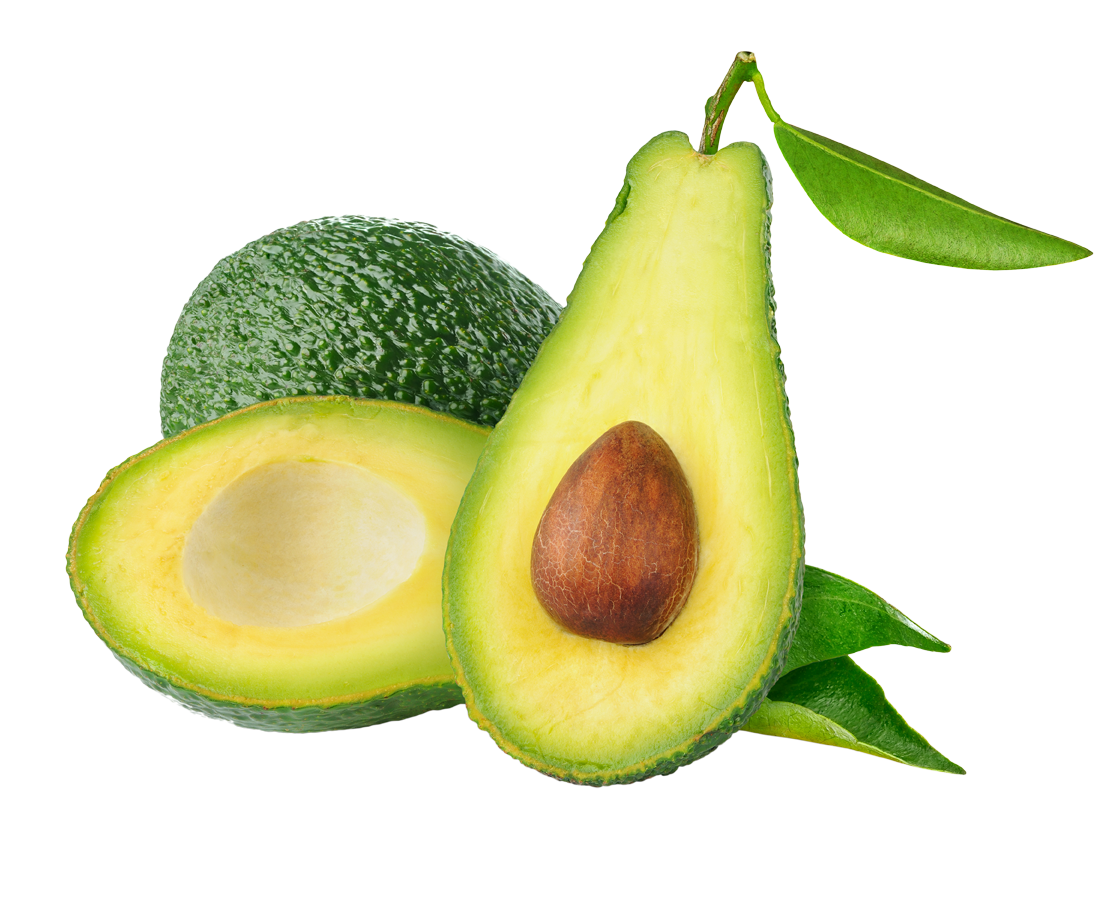 Avocado tree clipart free download Avocado PNG Transparent Images   PNG All free download
