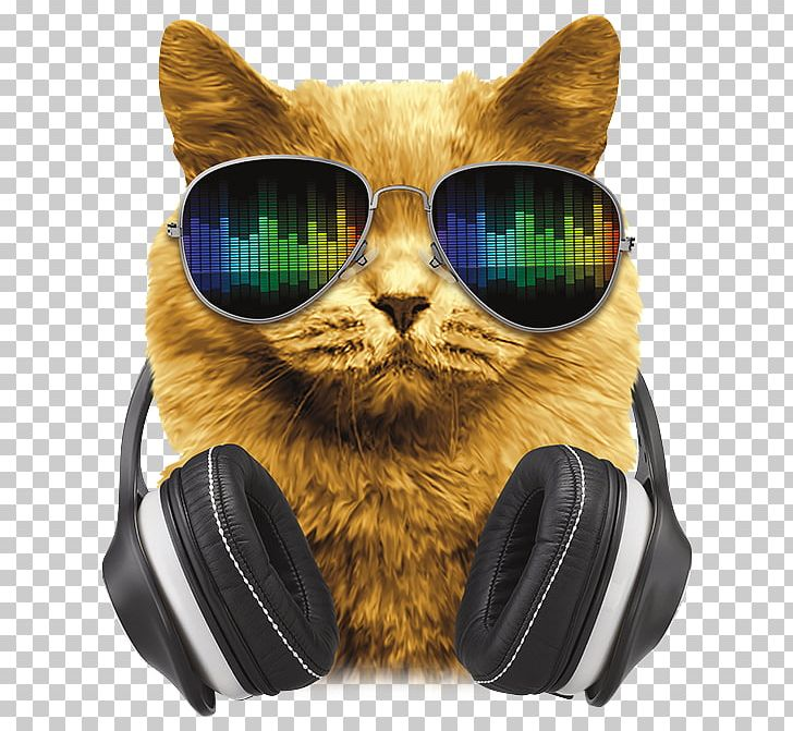 Axent wear clipart image free Axent Wear Cat Ear Headphones Denon Whiskers PNG, Clipart, Axent ... image free