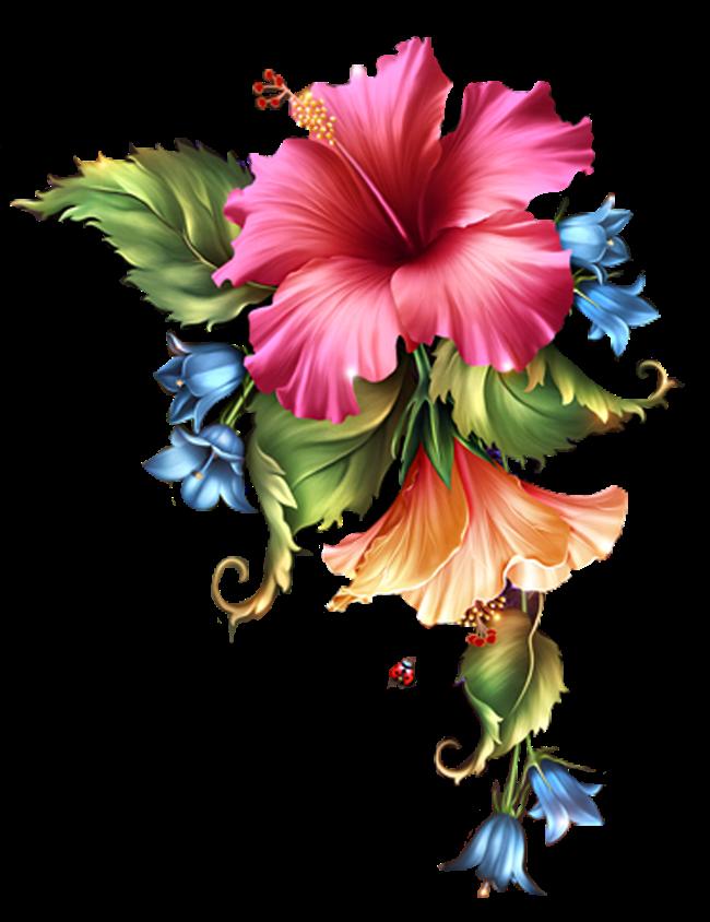 Azalea flower clipart banner black and white 0_c324f_b58eb52f_orig (650×844) | Kwiaty transparent | Pinterest ... banner black and white