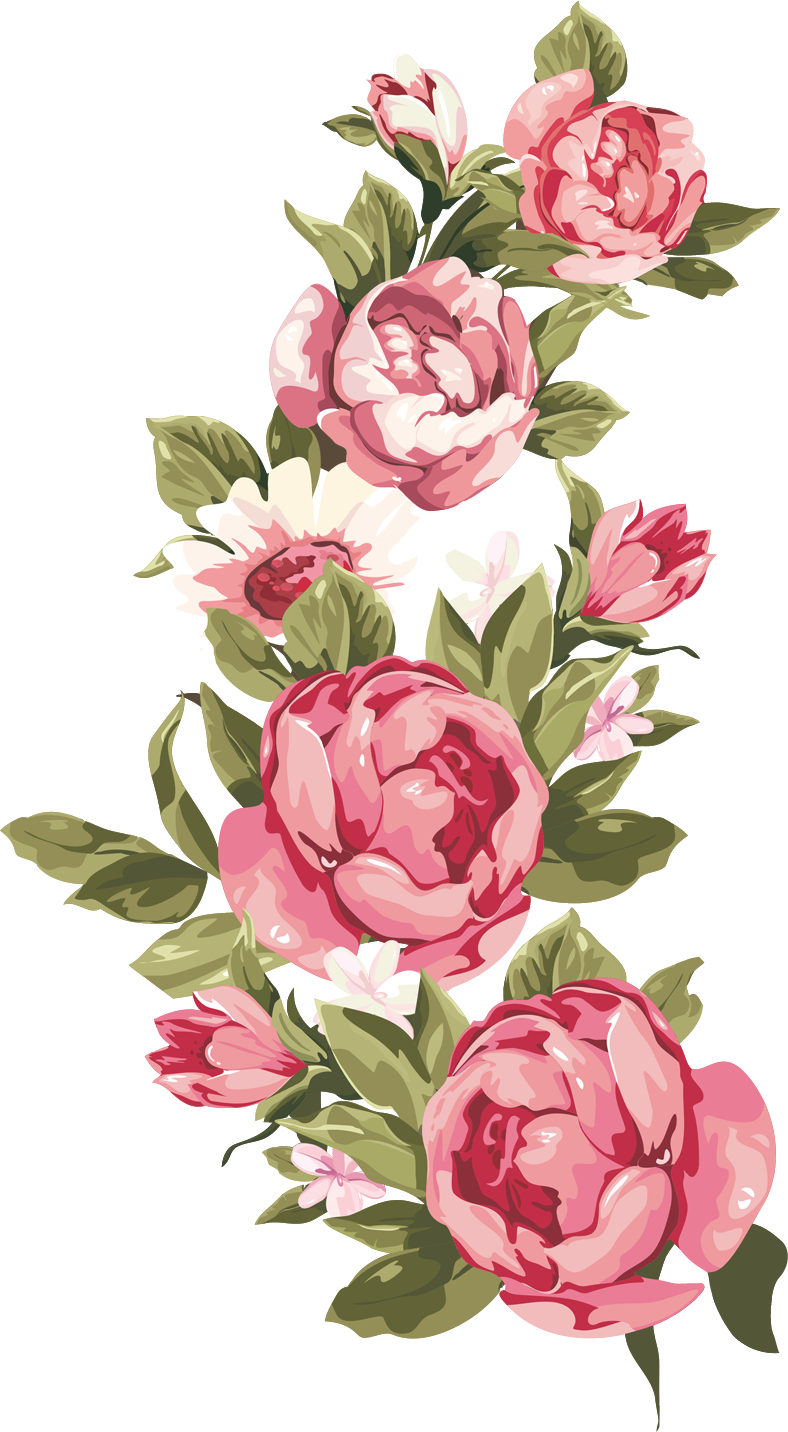 Peach watercolor flower clipart svg black and white stock http://www.vb.eqla3.com/attachment.php?attachmentid=1025269&d ... svg black and white stock