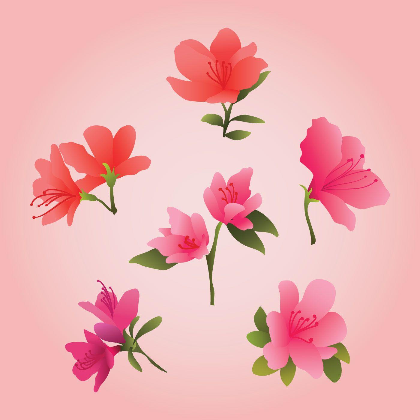 Azalea flowers clipart clipart free download Beautiful Azalea Flowers Clipart | clip art | Flowers, Clip art ... clipart free download