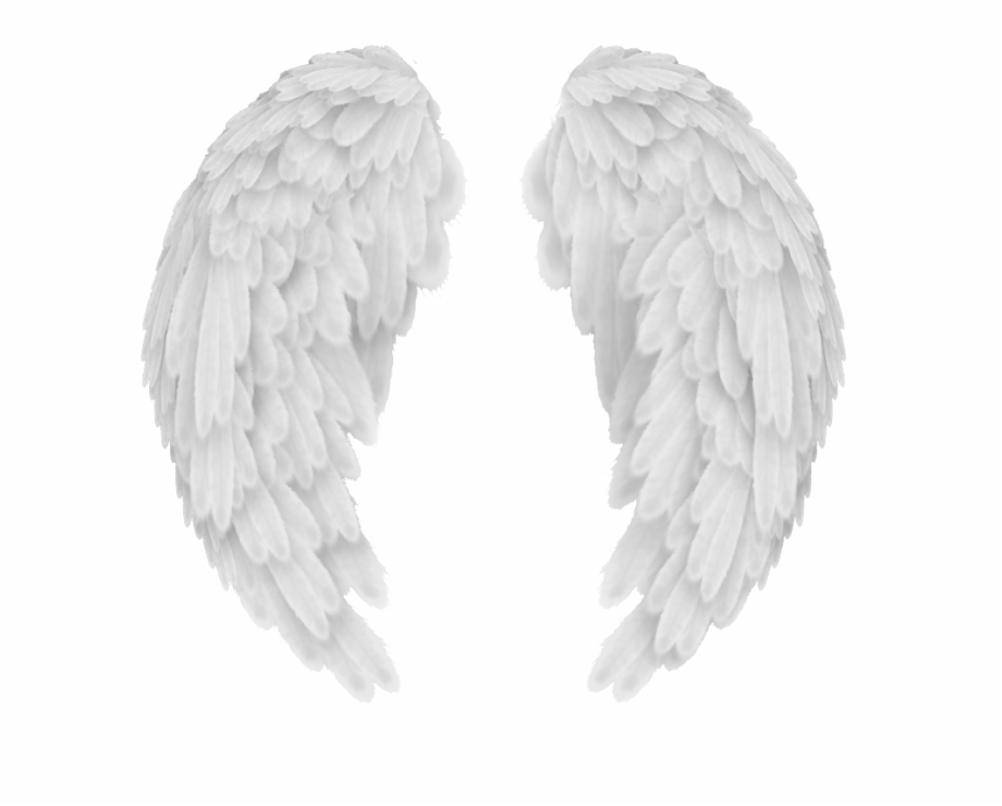 Baby angel wings clipart black and white image free library Angel Wings Png - Baby Angel Wings Background Free PNG Images ... image free library