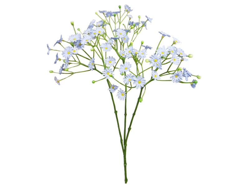 Baby-s breath flower clipart picture download Download Blue Cut Bouquet Breath Flower Baby\'S-Breath Baby Clipart ... picture download