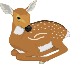Baby buck clipart banner royalty free download Free Baby Deer Cliparts, Download Free Clip Art, Free Clip Art on ... banner royalty free download