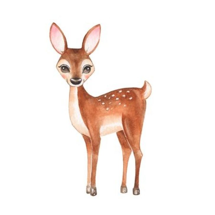 Baby buck clipart png library library baby buck deer clip art | www.thelockinmovie.com png library library